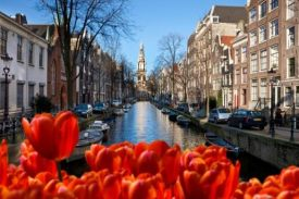 Amsterdam incentive ideas